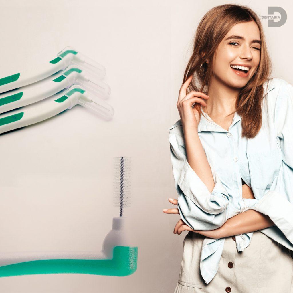 Cepillos interdentales e higiene bucal